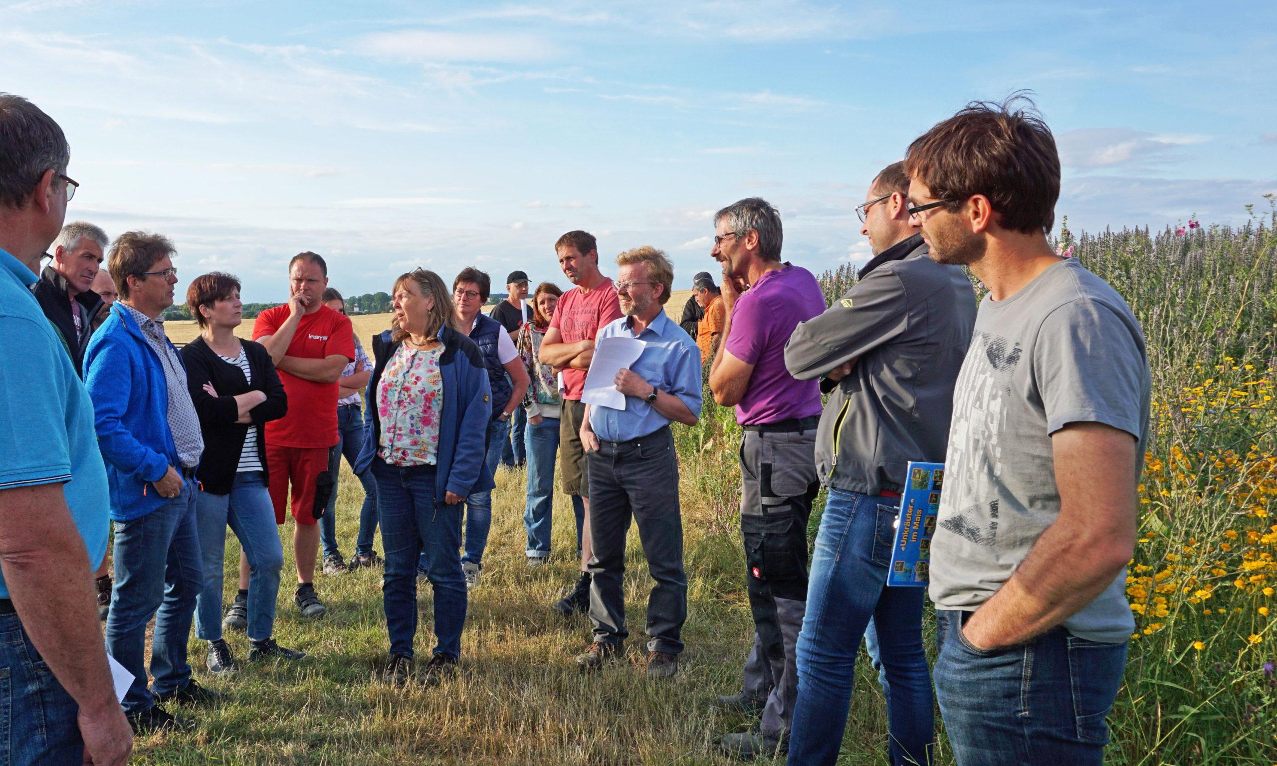 BiogasBlühfelderBegehung