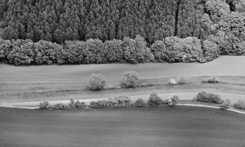 boden:ständig Gewässerrandstreifen